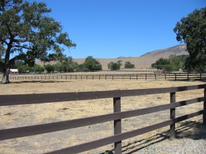 Rancho Felicia_monit_img01_Aug-07