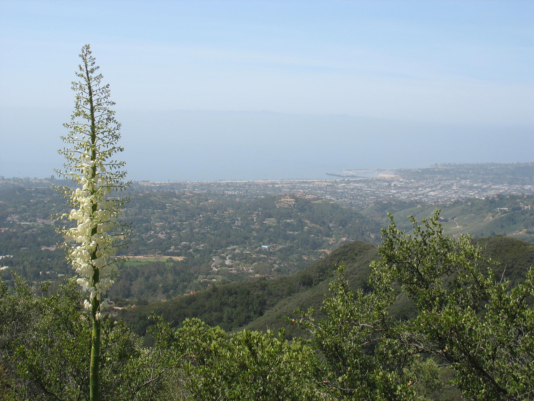 Mar Y Cel, Montecito