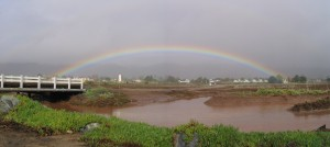 rainbow over Carpinteria Salt Marsh
