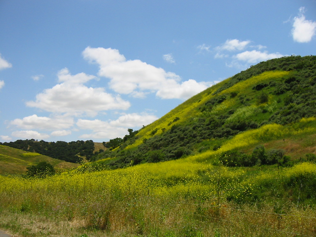 Gallery | The Land Trust for Santa Barbara County