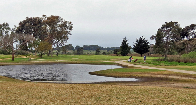 Ocean Meadows Golf Club To Be Restored To Wetlands