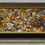 Precious California Water by Dale Howard, photograph 10x20, $400