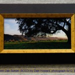 Ancient Oak Sunset (SOLD) by Dale Howard, photograph 6x12, $300