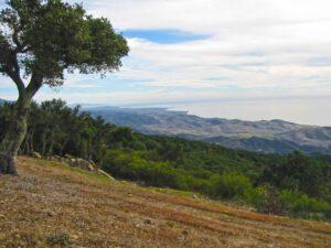 Rancho Dos Vistas