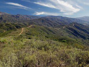 RMA-ridge-trail