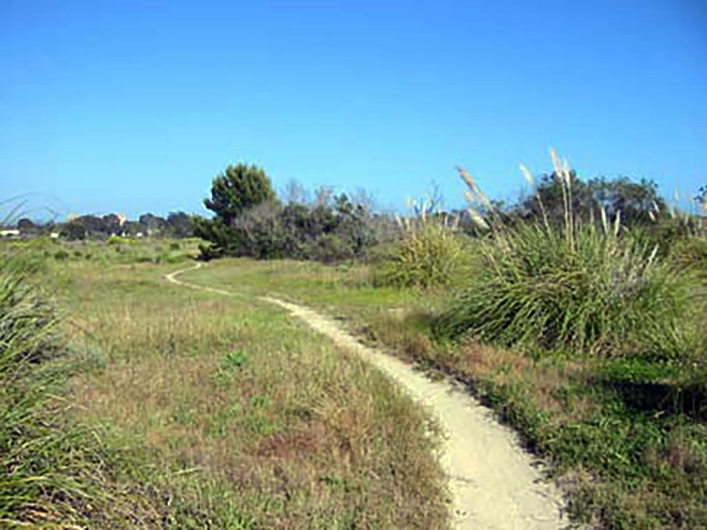 South Parcel Nature Park