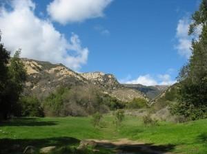 arroyo-hondo-preserve-630-wide-300x224