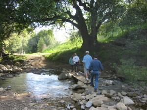 creek%20crossing%20300×400