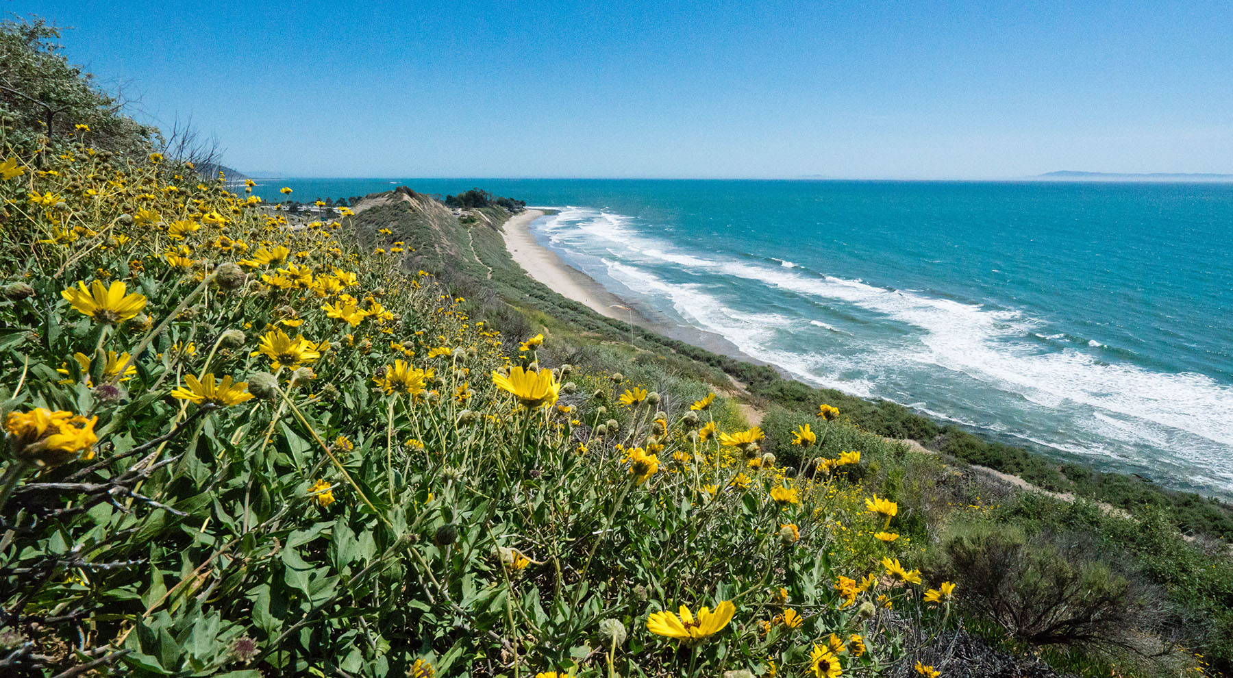 Carpinteria Bluffs III Awarded $144K CREF Grant