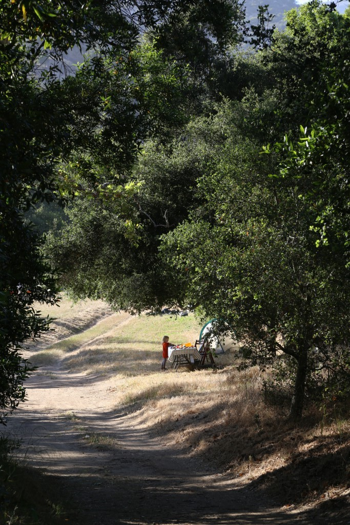 Volunteer Day at Arroyo Hondo Preserve | The Land Trust for