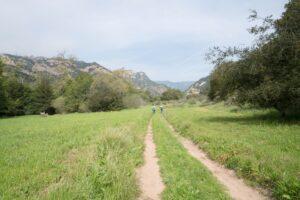 Trail through AHP