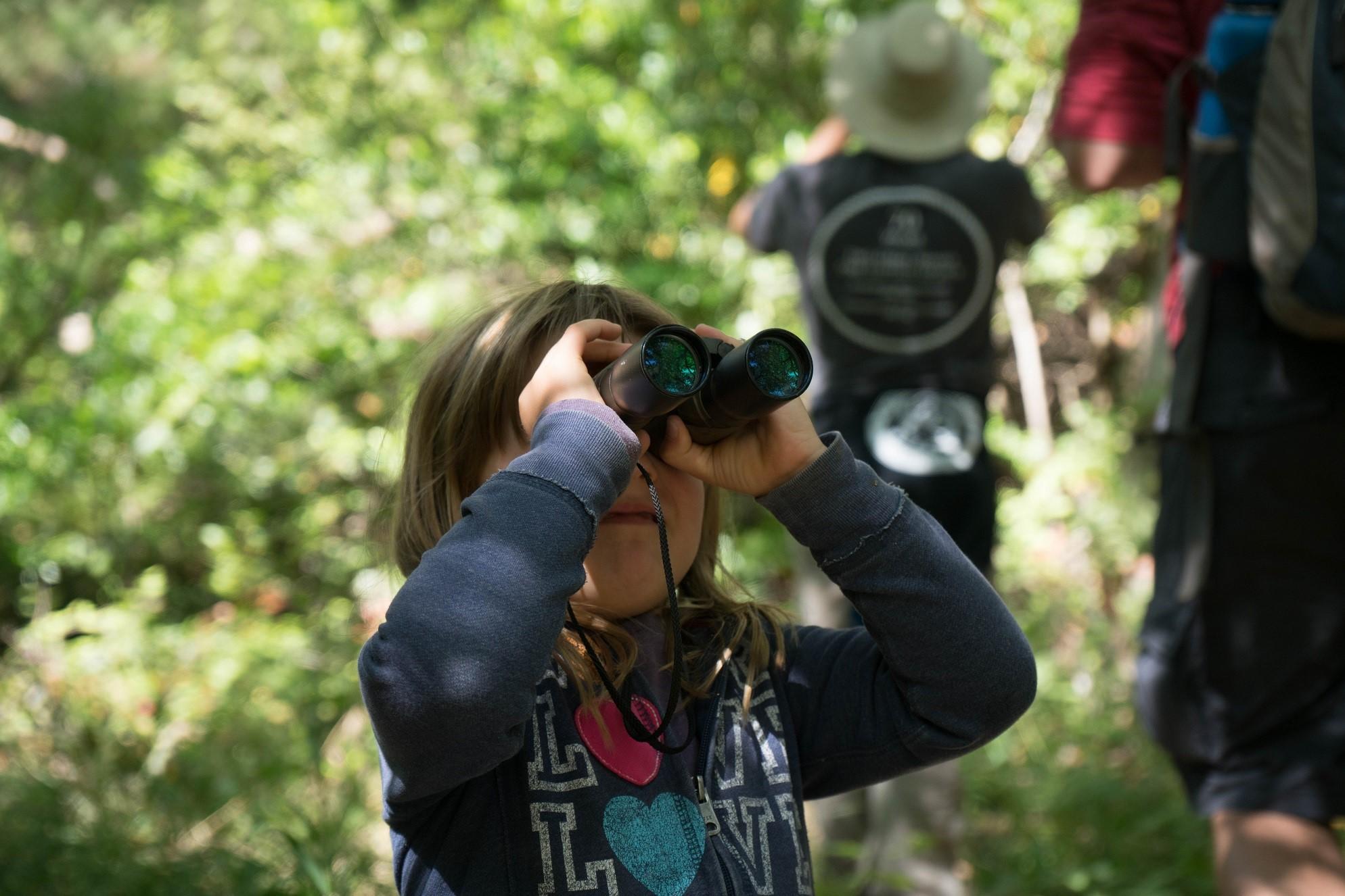 Birding At Arroyo Hondo
