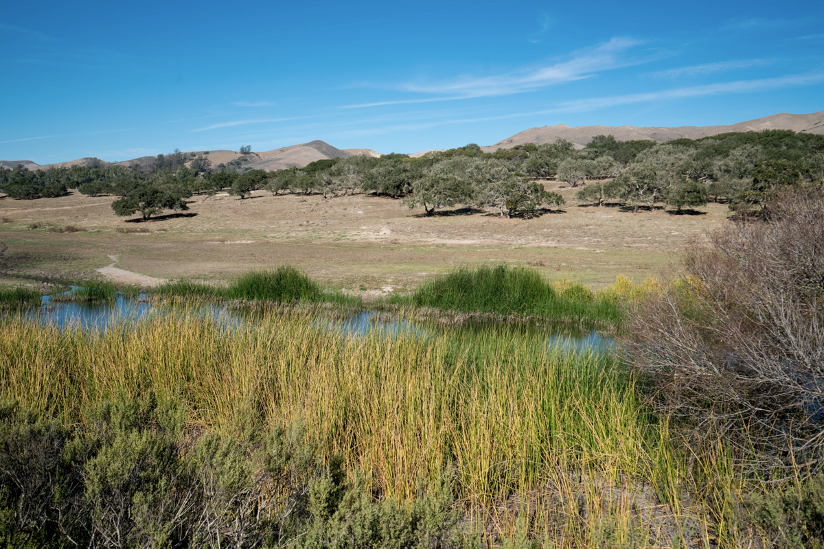 Completed Conservation Easement On Lompoc Family Farm In The News