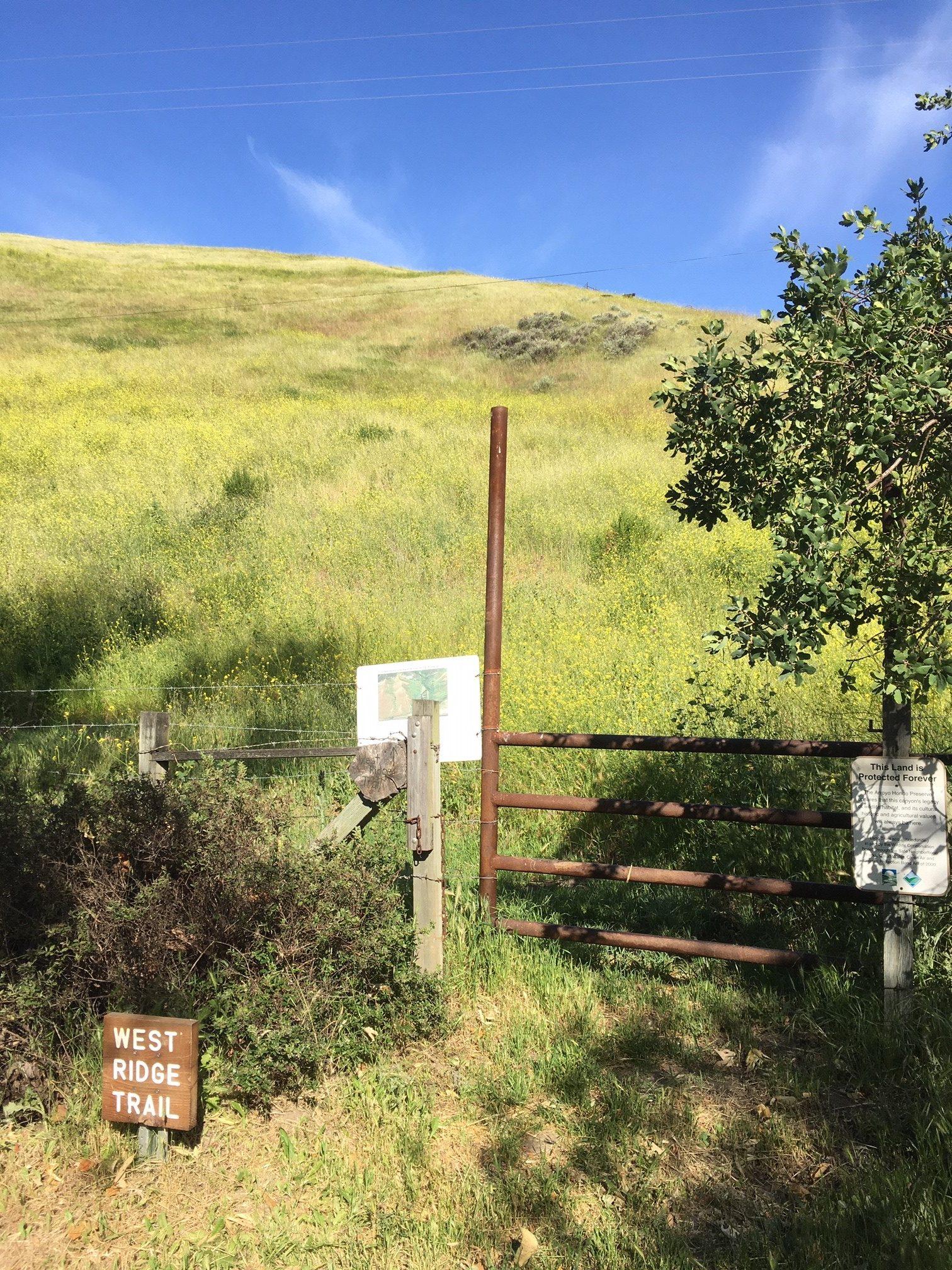 West Ridge trail 2