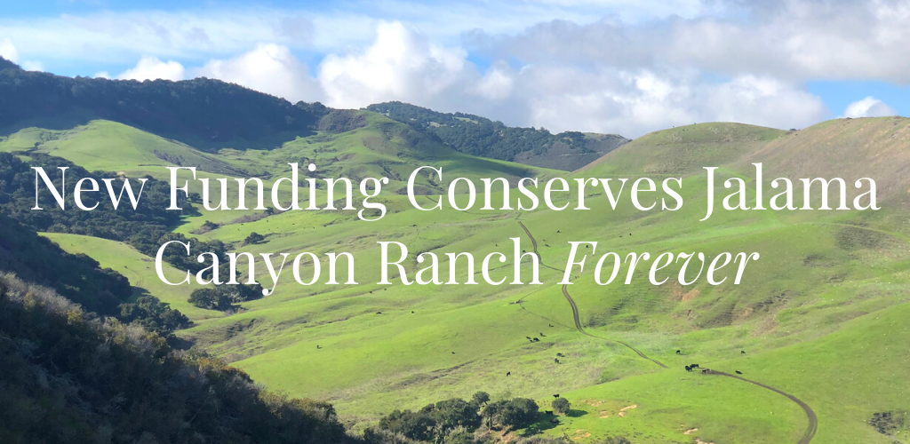In The News: Conserving Jalama Canyon Ranch