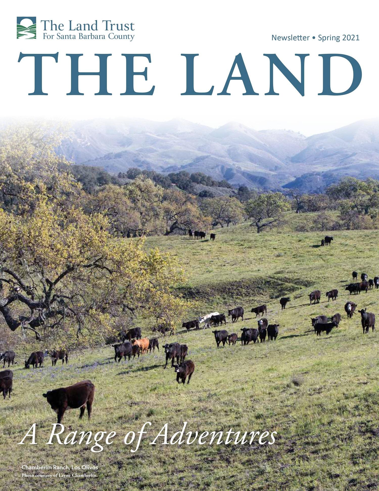 THE LAND Spring 2021 Newsletter
